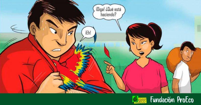 La historieta «Guardianes del bosque» enseña cómo actuar ante delitos contra flora y fauna  en Perú [PDF]
