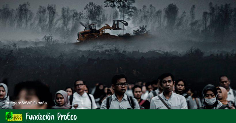 Pérdida de naturaleza y pandemias: un informe de WWF.